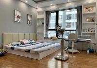 Bán nhà tặng toàn bộ nội thất tại Times city, Căn góc 115m-3PN