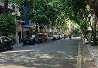 Chính chủ bán gấp nhà mặt phố trung tâm quận Ba Đình, vỉa hè cực rộng, mặt tiền miên man, giá rẻ
