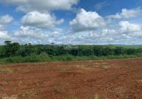 Bán gấp 360m2 thổ cư giá 1,5 tỷ tại đường Lý Thái Tổ hiện hữu 20m, sổ sẵn