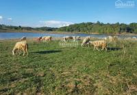 Cần bán lô đất view hồ Suối Rao thíCh hợp làm nghỉ dưỡng 100m mặt tiền đường nhựa l/h:0976.423.151