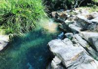 Bán nhanh lô đất rẫy ở Ninh Hưng. Đất đẹp giá tốt