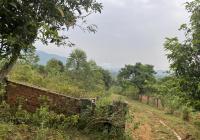 Diện tích 1433m2, 150m đất ở, xã Yên Bài, Ba Vì gần resort