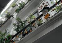 Bán nhà phố Doãn Kế Thiện, Cầu Giấy, DT 48m 5 tầng, MT 5m, ô tô đỗ cửa