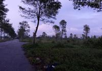 Chính chủ cần bán ô bt khu A2.3 của dự án Thanh Hà Mường Thanh