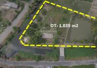 Lô đất mặt tiền view kênh cực đẹp tại Xã Phước Hậu, Cần Giuộc, Long An   Đất Nhà Vườn Cần Giuộc
