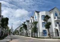 Chủ cần bán nhanh biệt thự song lập san hô SH06 - 42 Vinhomes Ocean Park - Gia Lâm - Hà Nội