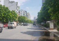 Nhà mặt tiền 17m phố Đỗ Quang, Cầu Giấy kinh doanh nhà hàng 330 triệu/m2