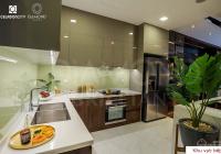 Giỏ hàng chuyển nhượng Diamond Celadon City Tân Phú căn hộ 2-3PN giá tốt