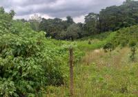 Bán đất thổ cư đường Lý Thái Tổ, cạnh UBND xã Đambi, giá ngộp 739tr sổ hồng chính chủ.
