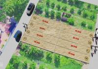 Chính chủ bán đất Quang Minh - 60m2 - gần khu công nghiệp - full thổ cư - giá chỉ chưa đến 18 tr/th