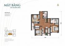 Thiết kế căn hộ 08, 09