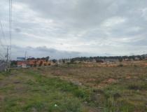 """Thêm 4 dự án bất động sản tại Bình Thuận bị """"tuýt còi"""""""