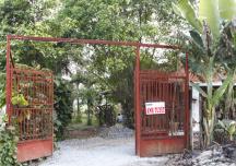 Ca sĩ Ánh Tuyết và ngôi nhà vườn thanh bình ven đô