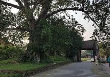 Ngôi nhà gần 400 năm tuổi ở làng cổ Đường Lâm