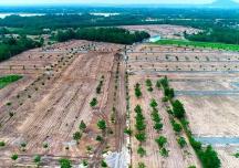 Địa ốc Alibaba phân lô trái phép hàng trăm ha đất thế nào?