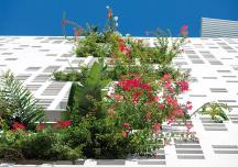Đã mắt ngắm những tòa nhà phủ đầy cây xanh trên khắp thế giới