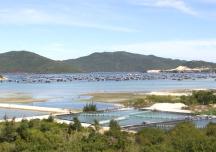 Khánh Hòa kiến nghị dừng lập quy hoạch khu kinh tế Bắc Vân Phong