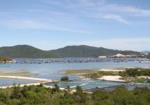 Tạm dừng quy hoạch Đơn vị hành chính - kinh tế đặc biệt Bắc Vân Phong