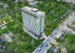 Harina View