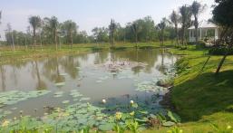 Bán 1000m2 đất biệt thự nhà vườn 3 mặt giáp sông giá 21 triệu/m2, trả trước 3.3 tỷ. LH: 0982297698