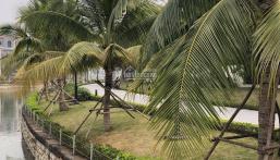 Chính chủ cần bán BTSL lô góc khu Đất Quảng khu Vinhomes Thăng Long, Hoài Đức, Hà Nội