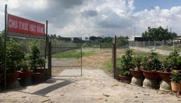Chính chủ kẹt tiền cần bán lại lô đất 714m2, Phường An Phú Đông, Quận 12