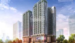 Chính chủ bán gấp căn hộ 03 tòa D1 chung cư 6th Element nhận nhà ở ngay. LH: 0962225922 A. Phong