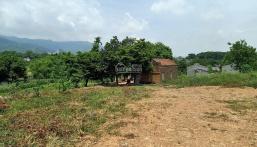 Bán nhanh lô đất 9700m2 đã có khuôn viên tường bao xung quanh tại Nhuận Trạch, LS, HB
