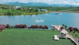 Bảo Lộc Park Hills đầu tư nghỉ dưỡng lợi nhuận kép