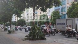 Siêu phẩm nhà mặt phố Khúc Thừa Dụ 65m2 x 9T, MT 5,5m, vị trí vàng trong làng kinh doanh mặt phố