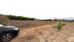 Bán gấp lô đất 2000m2 gần khu dân cư xã Diên Đồng, chỉ với 290 triệu. LH: 0982497979 gặp Vy