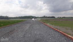 Tôi cần bán đất sào Phước Khánh mới cắt sổ xong giá gốc F0, đường 5m, mặt rạch, 1000m2, giá 830tr