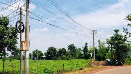 Đất 1200m2 50×25m, huyện Trảng Bom, Đồng Nai