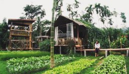 Đất nền rẻ nhất chỉ 470 triệu, sổ riêng, gần trung tâm Bảo Lộc