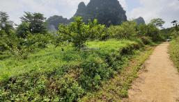 Siêu phẩm nghỉ dưỡng tuyệt đẹp tại Kim Bôi, Hòa Bình diện tích 1.6ha