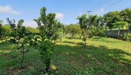Hàng hiếm siêu phẩm 4290m2 full thổ cư chỉ có tại Cao Phong, Hòa Bình