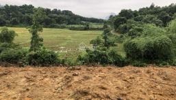 Nhà vườn Cư Yên 4500m2 giá rẻ giật mình, view cánh đồng tuyệt đẹp, thế đất phẳng lỳ.