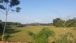 Bán gấp 1688m2 tại Hòa Sơn Lương Sơn cách trục chính 300m2 cải tạo đất bằng phẳng view đẹp giá rẻ