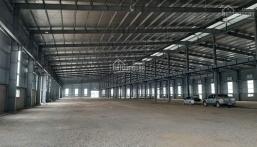 Cho thuê kho xưởng trong khu công nghiệp Tân Đức, Tân Đô, Hải Sơn, Đức Hòa, Xuyên Á, Liên Minh