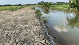 Tôi cần bán đất xã Phước Khánh,Nhơn Trạch,sổ hồng riêng 450 tr/1000m cắt được 3 lô
