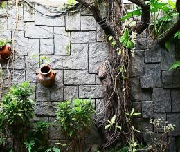 Thiết kế sân vườn đẹp mà không tốn nhiều công sức và tiền bạc