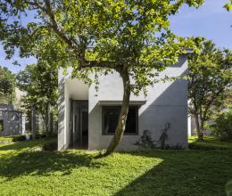 Ngôi nhà hình chữ Y nhường chỗ cho cây độc đáo ở Nghệ An