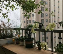 Thiết kế ban công chung cư sao cho đẹp và an toàn