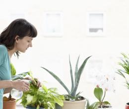 Những cách phòng ngừa ô nhiễm trong nhà không nên bỏ qua