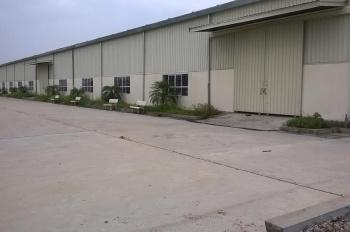 Cho thuê kho xưởng Văn Lâm, Hưng Yên, 800m2-1500m2-6000m2 của Công ty Hà Thành