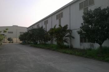 Cho thuê kho xưởng KCN Quang Châu - Việt Yên - Bắc Giang, DT: 1500m, 3000m2, 7000m2, Cty Vĩnh Hà