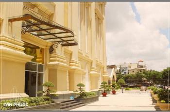 Chính chủ cần tiền bán gấp căn hộ cao cấp Tân Phước Plaza, Q11 chỉ 2,4 tỷ/53m2 - 3 tỷ DT 74m2