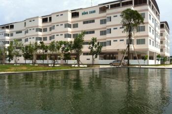 Căn hộ chung cư Hồng Sanh Thuận Giao, Thuận An, Bình Dương