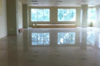 Cho thuê sàn văn phòng 50 -100 - 200-300- 500m2 đường Láng Hạ, Đống Đa, Hà Nội. 200 nghìn/m2/tháng