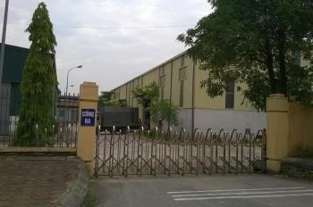 Bán 3,1ha đất công nghiệp 50 năm tại Văn Giang - Hưng Yên - Công ty CP Hải Phúc